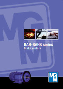 BAH series - MGM Electric Motors_1